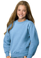 Youth Sweat Shirts